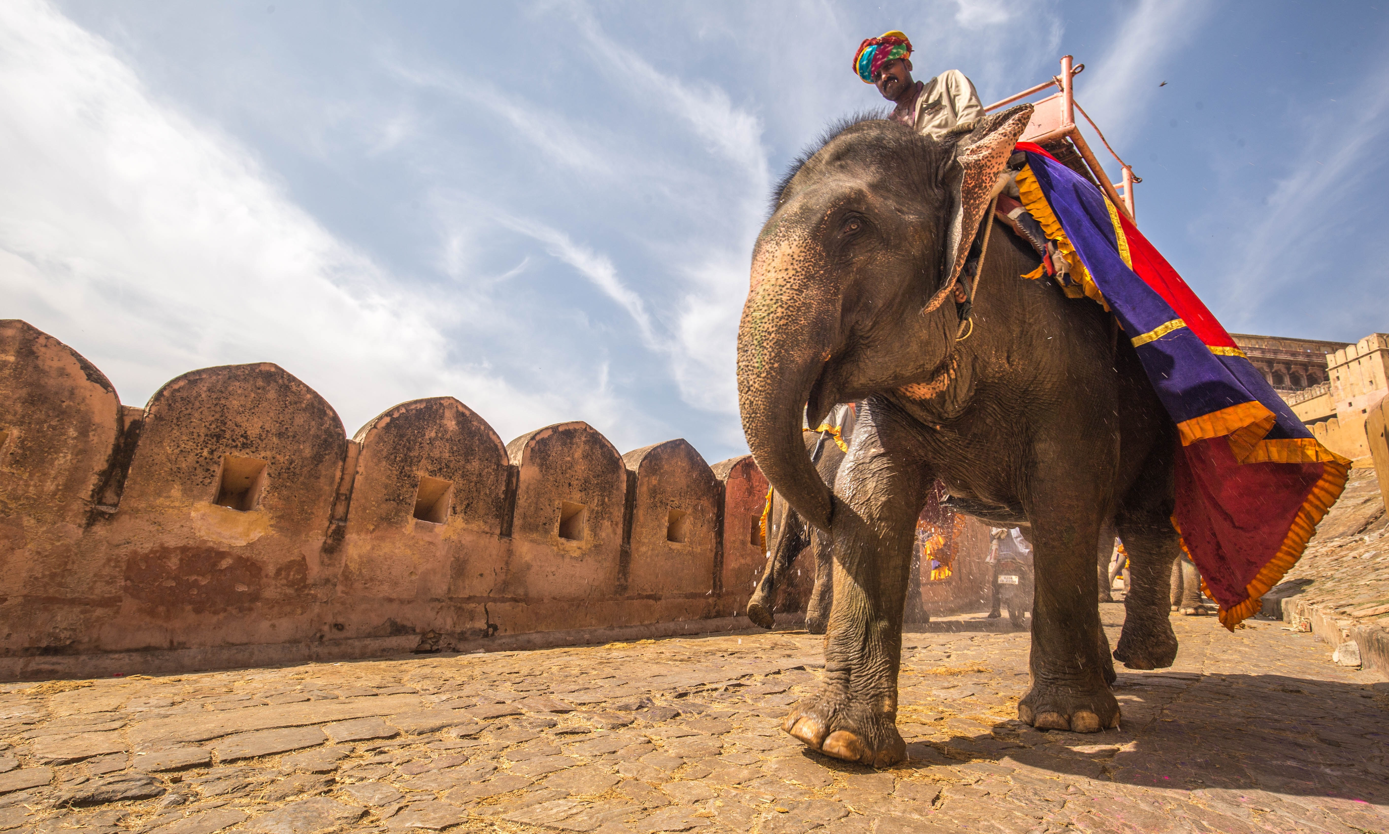 Riding an elephant in Jaipur, India