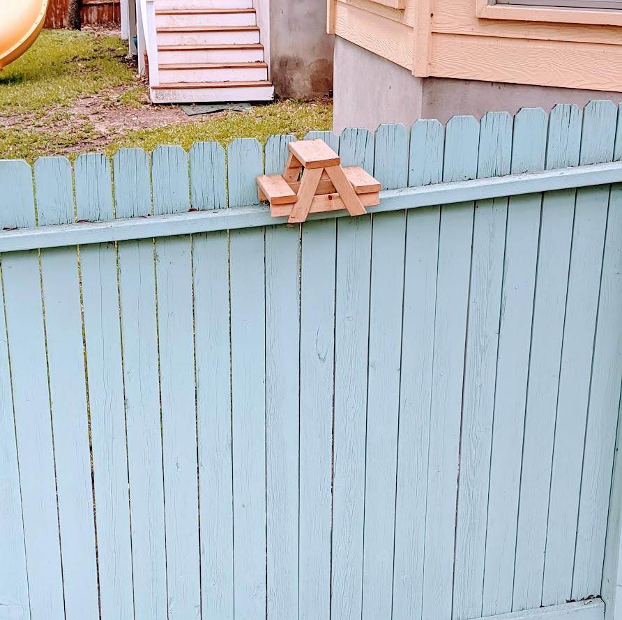 Squirrel picnic table on fence, photo credit Iris Gonzalez.